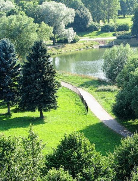 Судьбу Южно-Приморского парка обсудили жители Красносельского района