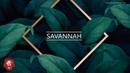 """Savannah"" - Dancehall Pop Type Beat | Afrobeat Lil Dicky | Positive Earth Instrumental 2019"