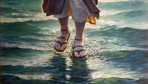 Читать  - бачинская инна юрьевна шаги по воде