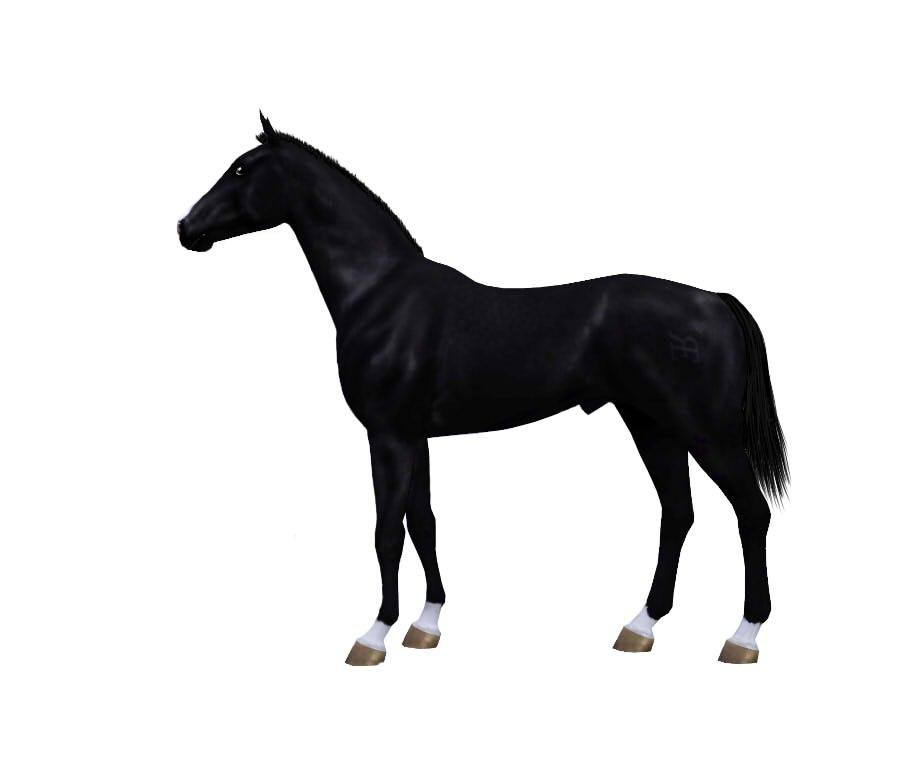 Регистрация лошадей в RHF 1.1 - Страница 2 KIV2GyDBTiw