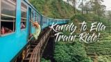 KANDY TO ELLA TRAIN RIDE BEST IN THE WORLD! SRI LANKA VLOG 35