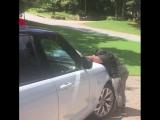 Quavo подарил своей маме машину [Новая Школа]