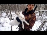 Охота на зайца зимой
