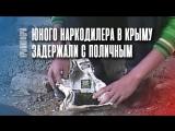 Пограничники задержали в Крыму юного наркодилера