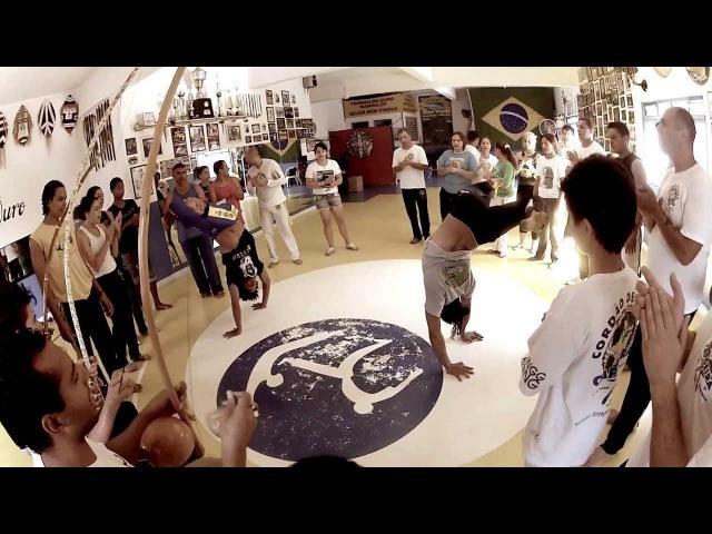 Professor Lobinho CDO Mangalot Slow Motion