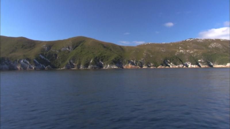BBC Океаны. Южный океан. 2008. часть 2