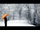 눈이 내리네 Tenor Saxophone, 이응복