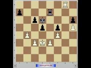 Шахматы. Анализ шахматной партии. Капабланка 3