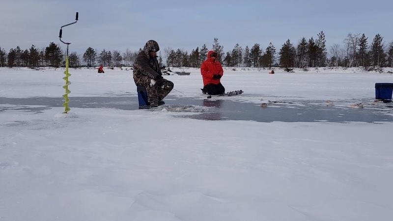Рыбалка по первому льду ноябрь 2018.Сургут.Щука.Окунь.Снегоход.
