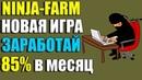 NINJA-FARM - НОВАЯ ЭКОНОМИЧЕСКАЯ ИГРА БЕЗ БАЛЛОВ ! ПОЗВОЛИТ ЗАРАБОТАТЬ 85 за месяц!