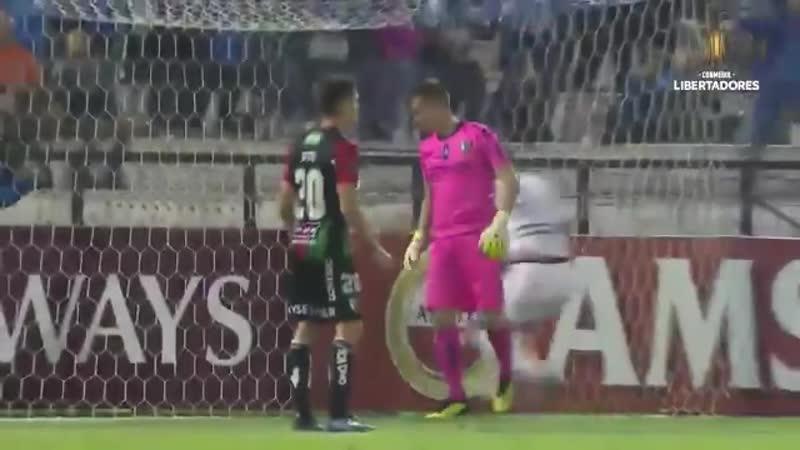 Вратарь Палестино пропустил крайне странный гол в матче Кубка Либертадорес