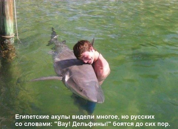 http://cs417620.userapi.com/v417620034/3619/ECU5lcdVIlE.jpg