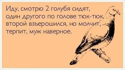 http://cs319422.vk.me/v319422095/87f4/qHYqfvol0Qs.jpg