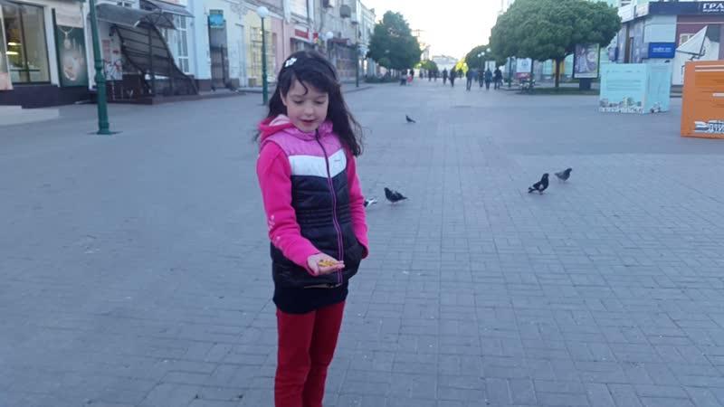 Внучка кормит голубей