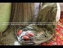 Как правильно разрезать рыболовную дель и начать работу с рыболовной узловой делью.