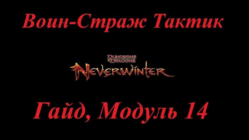 Neverwinter Online Гайд Воин-Страж Тактик М14 Билд