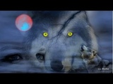 Lake Of Tears - The Homecoming - Lyrics (HD)
