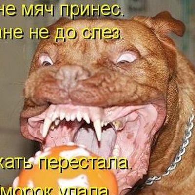 Людмила Губина, 12 апреля , Тула, id57142033