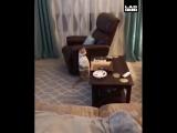 Сломали кота)))