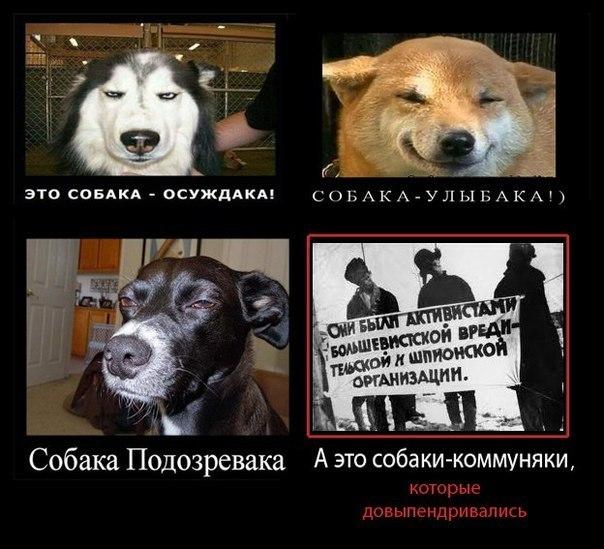 """""""Украинцы нанесли решающий удар по пятой политической колонне!"""", - Порошенко о непрохождении коммунистов в парламент - Цензор.НЕТ 1161"""