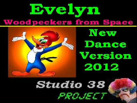 Evelyn v.s Van der Linden - Woodpeckers from Space ( 2012 Remix )