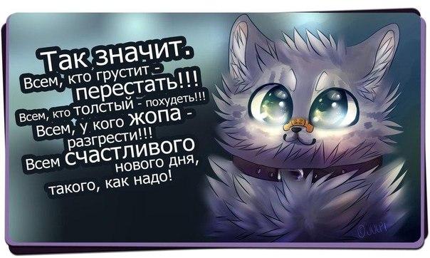 http://cs14111.vk.me/c540100/v540100306/2303/aZ4j7J6g3qA.jpg