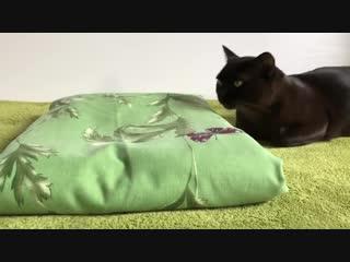 Как сложить комплект постельного белья в кармашек Проще простого