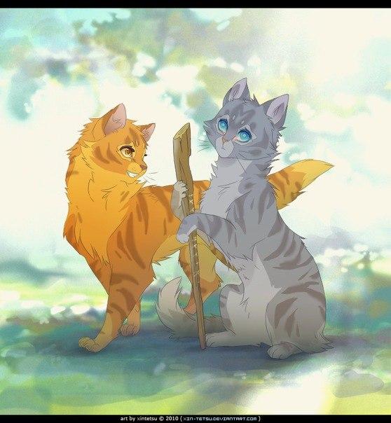 Коты воители картинки самые красивые - 1f