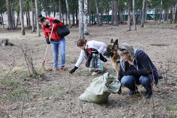 Месячник по санитарной очистке и благоустройству территории Усть-Илимска