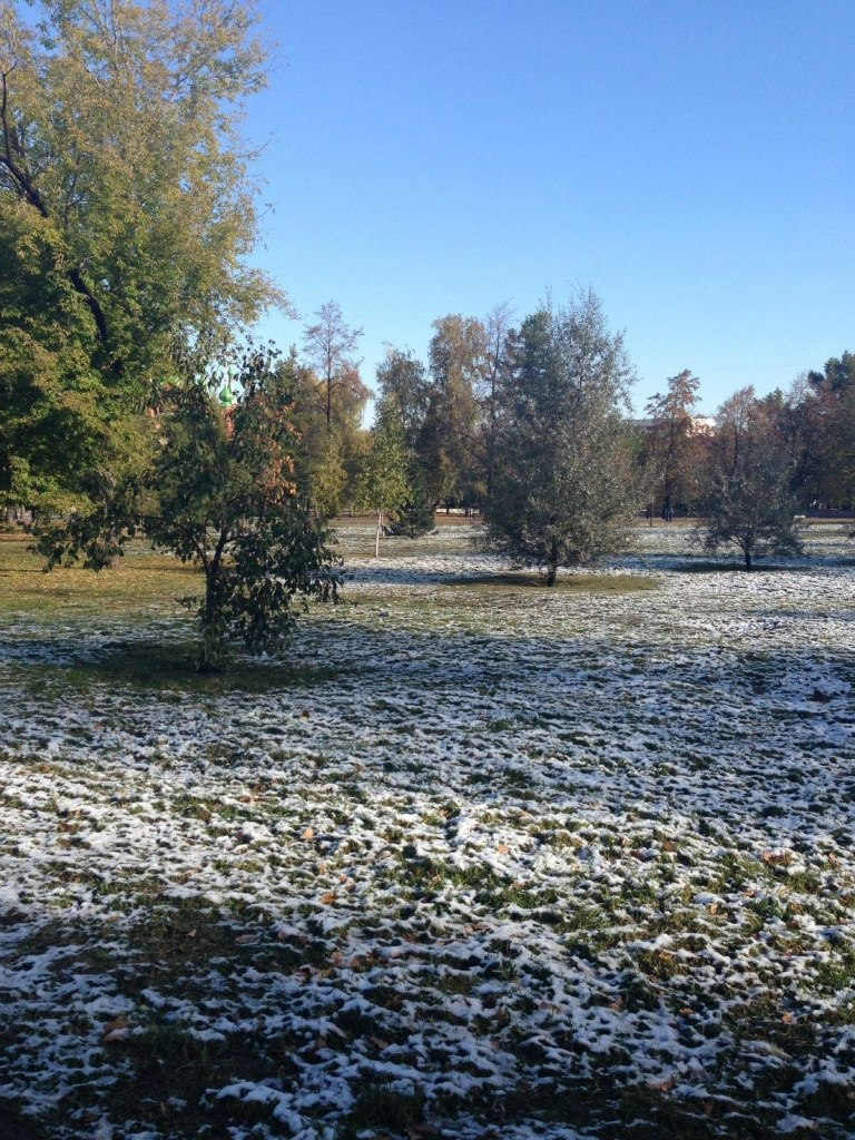 Первый снег (07.12.2013)