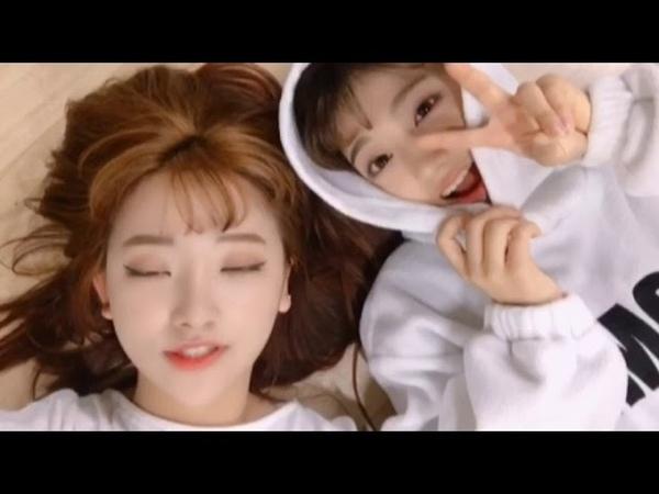 [핑크판타지/Pinkfantasy] 데일리셀카26 - 유빈이와 아랑이의 커버댄스! (I NEED YOU)