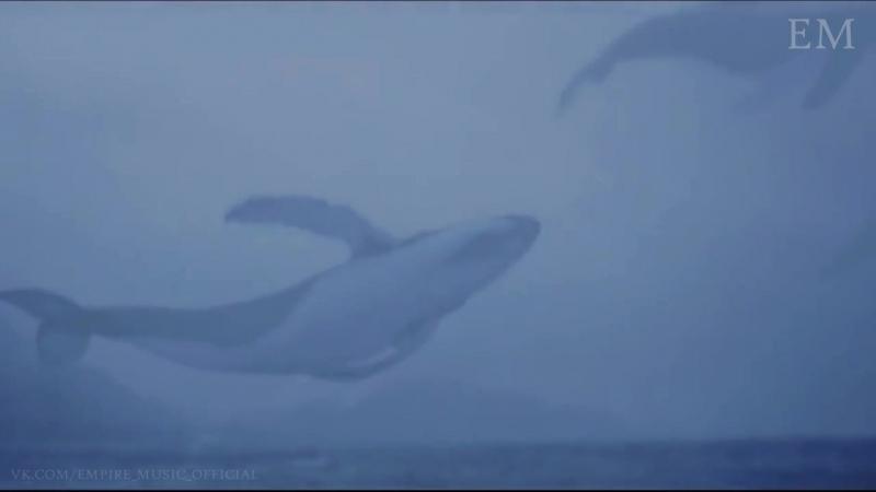 Мияги Эндшпиль - Синий кит