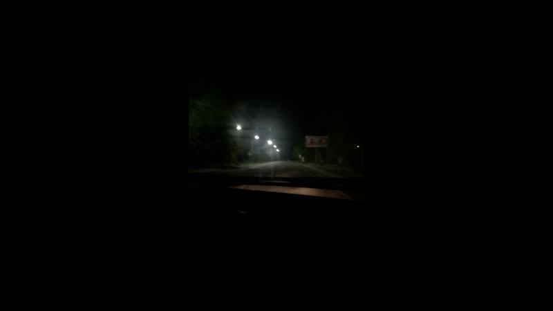 Вика Шилова — Live