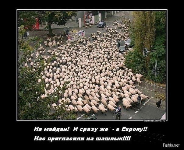 """Руслана намерена идти до конца: """"Я сожгу себя на этом Майдане, если не произойдут изменения"""" - Цензор.НЕТ 9160"""