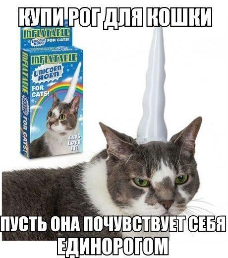 http://cs311718.vk.me/v311718861/6904/gIj1Fu0VS9o.jpg