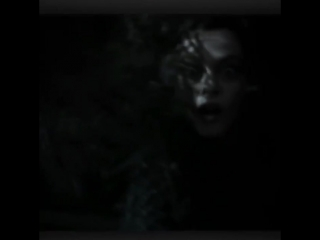 Bellatrix lestrange vine