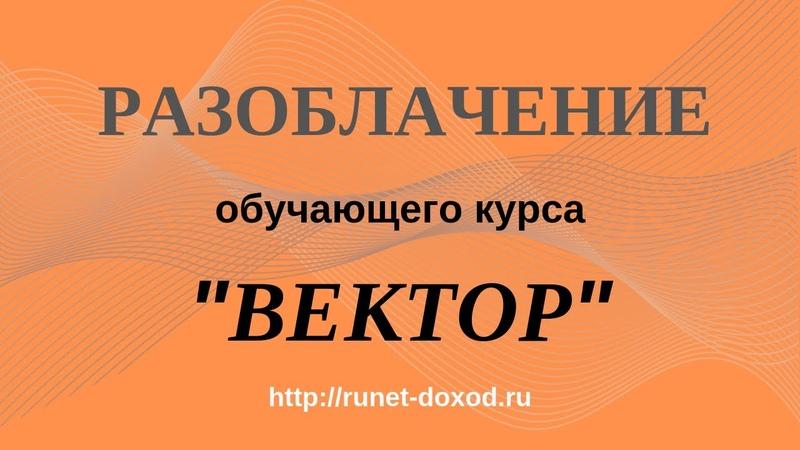 Вектор I Дмитрий Чернышов и его пошаговый видео курс по старту в Интернете за 1 час