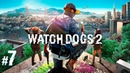 Прохождение Watch Dogs 2 — Часть 7 Russian HD Ubisoft / RU