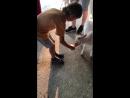 Оксана с детьми кормит козлят