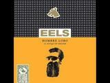 Eels - My Timing Is Off
