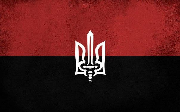 Создание партизанского движения должно быть зафиксировано на госуровне, - советник главы МВД - Цензор.НЕТ 2745