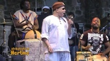 C'est Bon LIVE by Salif Keita African Music Hertme Festival 2013