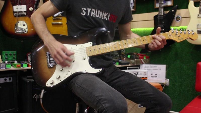 Fedner Elite Stratocaster