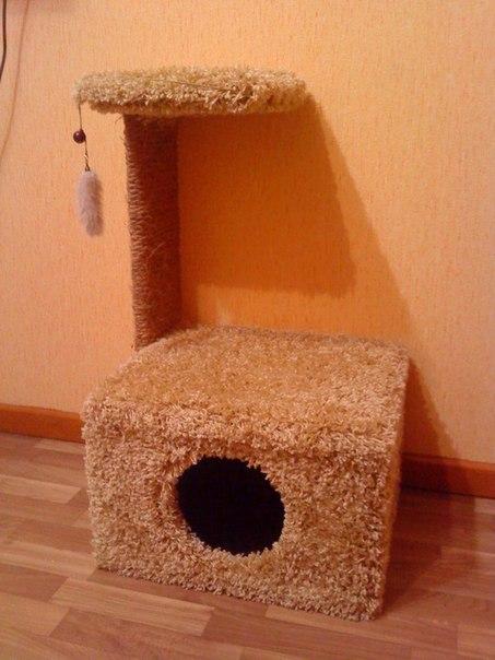 Как сделать дом котёнку