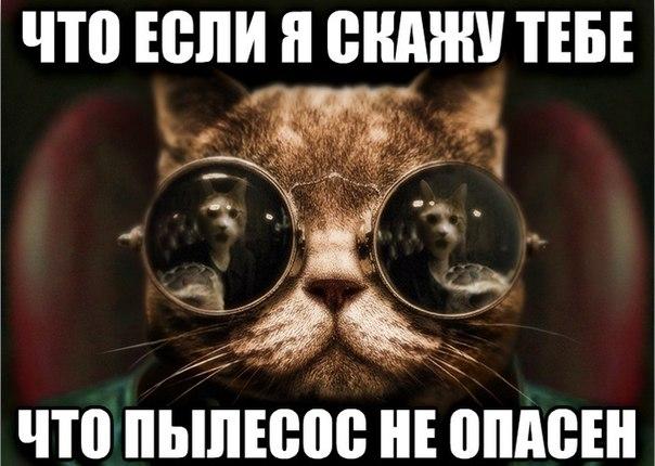 http://cs418419.userapi.com/v418419864/20aa/TiVQ4kWrv-k.jpg