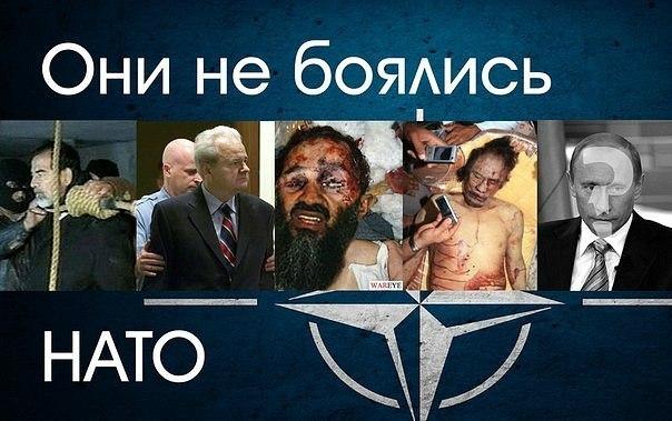 Савченко уже находится в СИЗО Ростовской области, - Фейгин со ссылкой на источники - Цензор.НЕТ 7450