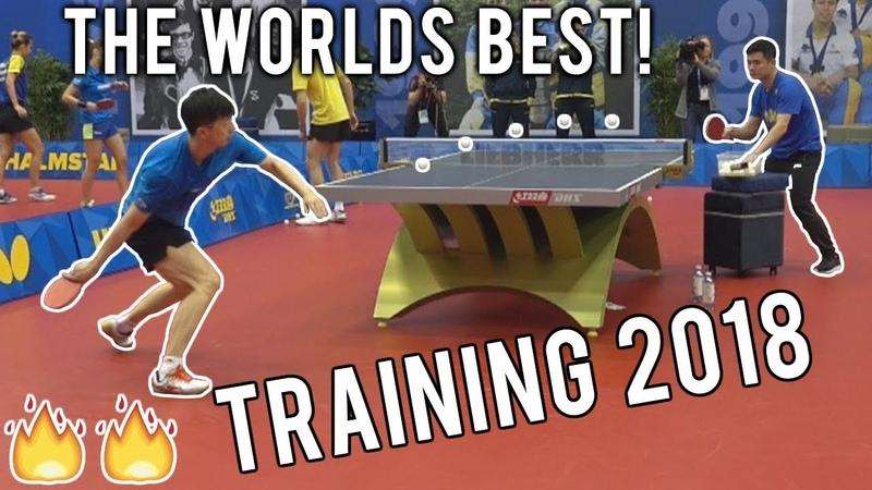 Ma Long Fan Zhendong Training 2018   Relentless