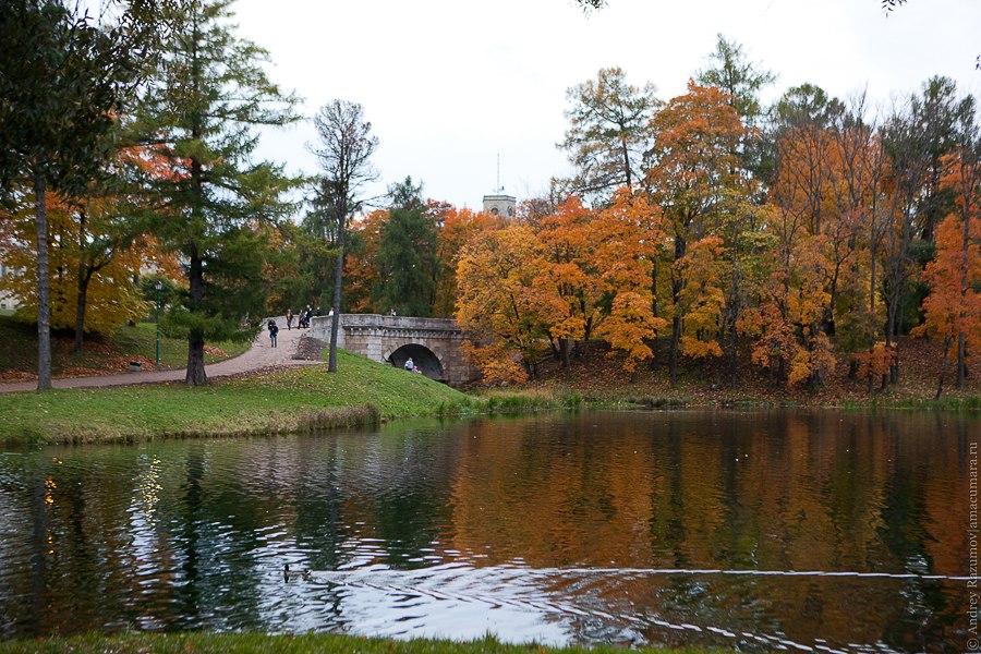Гатчина дворец парк