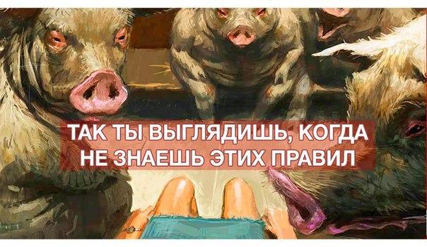 """10 качеств воспитанного человека, не знать которые стыдно: 1. Зонт никогда не сушится в раскрытом состоянии - ни в офисе, ни в гостях. 2. Нельзя называть близкого Вам человека """"зай"""" при посторонних. Это верх невоспитанности. 3. Женщина обязана всегда первой Читать полностью..."""