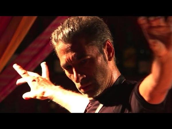 Israel Galvan, du flamenco et des chats dans Gatomaquia
